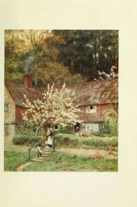 43-cherry-tree-cottage