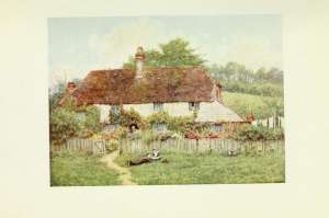 49-cottage-at-shottermill
