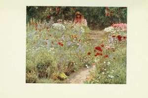 64-in-asummer-garden