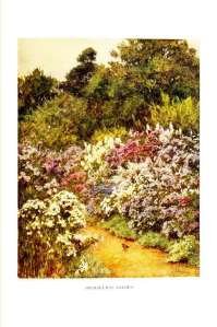 the-cottage-homes-of-england-helen-allingham-64